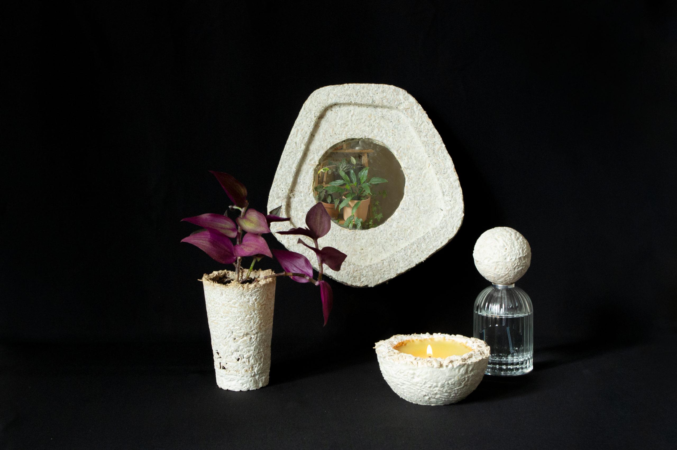a - Mycelium - les usages